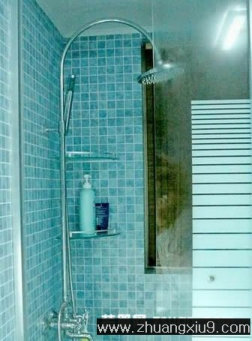 家庭室内装修设计图片之卫浴装修图片:古典卫生间实景图淋