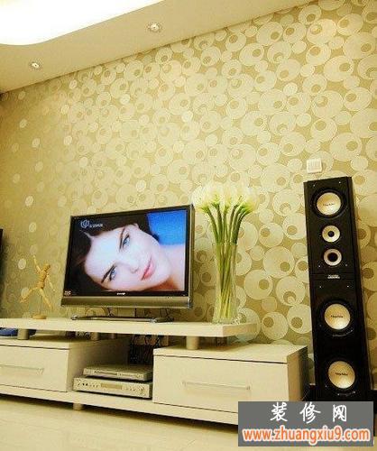 2013年电视墙壁纸效果图欣赏 客厅装修效果图